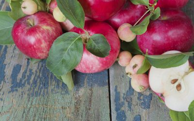 Crunch Into History With Heirloom Apples