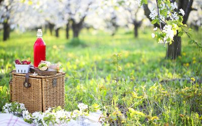 RECIPES: How to Make the Perfect Summer Picnic