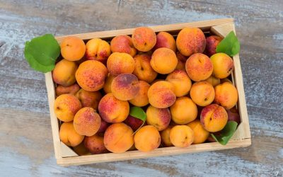 RECIPES: Late-Summer Stone Fruits