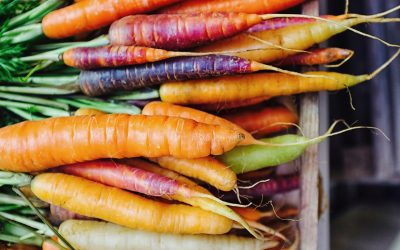 RECIPES: Farmers Market Bounty Makes Great Fall Cooking