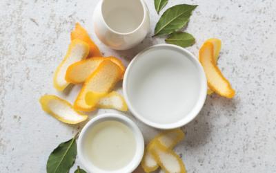 All-Purpose Citrus Spray Cleaner